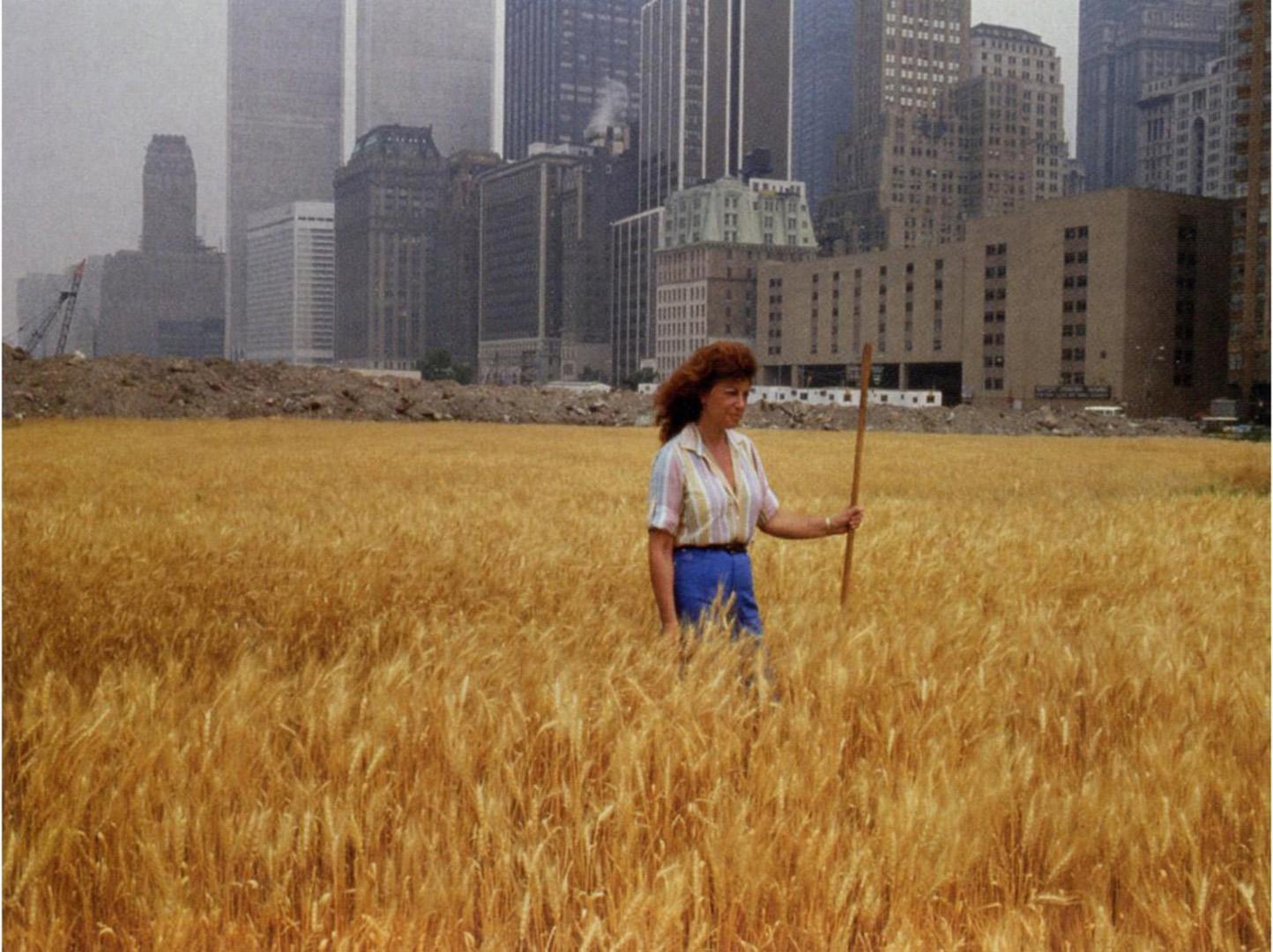 6_A Wheat Field_Agnes Denes