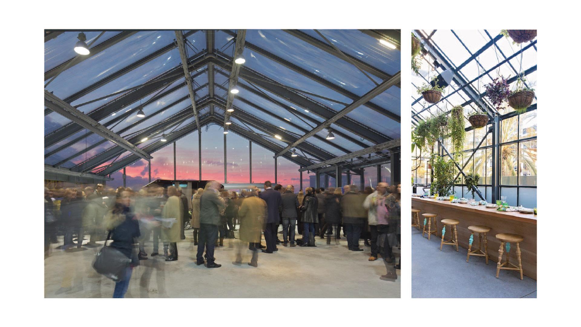 07_greenhouse-public-space